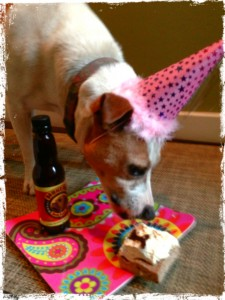 Call me crazy, but nothing's cuter than a canine party girl!